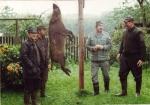 Lata 90-te - dewizowe rykowisko - na porannym wyjściu dewizowcowi udało się strzelić dzika - często był to pierwszy w życiu dzik takiego myśliwego.